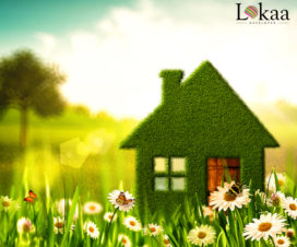 Why Should You Invest in a Green Home